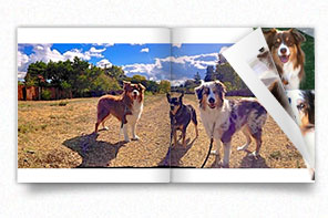 petphotobook